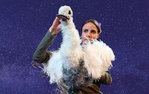 The Goose Who Flew at Norwich Puppet Theatre
