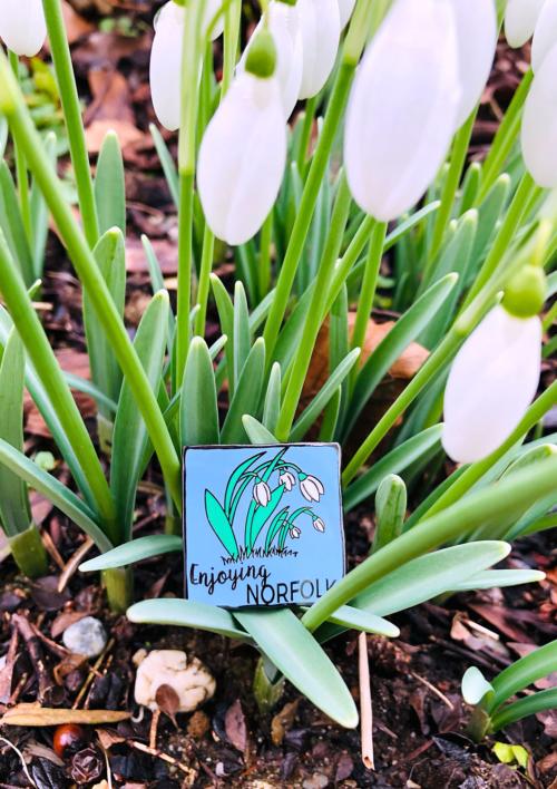 Enjoying Norfolk Spring 2021 Virtual Challenge pin badge.