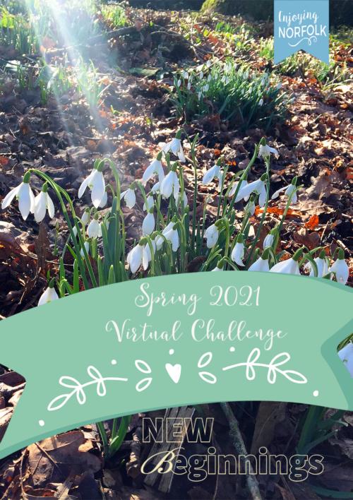 Enjoying Norfolk Spring 2021 Virtual Challenge: New Beginnings.
