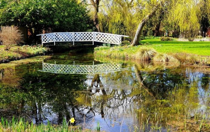The Monet Pond at Gooderstone Water Gardens.